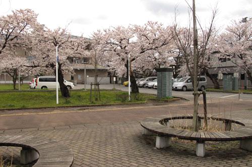 22.4.15水原小学校